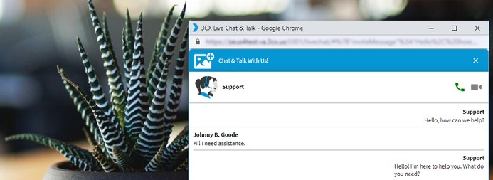 Screenshot of enhanced visual customisation of 3CX Live Chat & Talk module